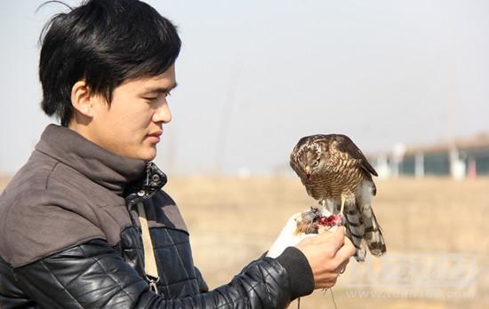"""安徽大学毕业生变身""""猎鹰人""""尝试在新桥机场用鹰驱鸟"""